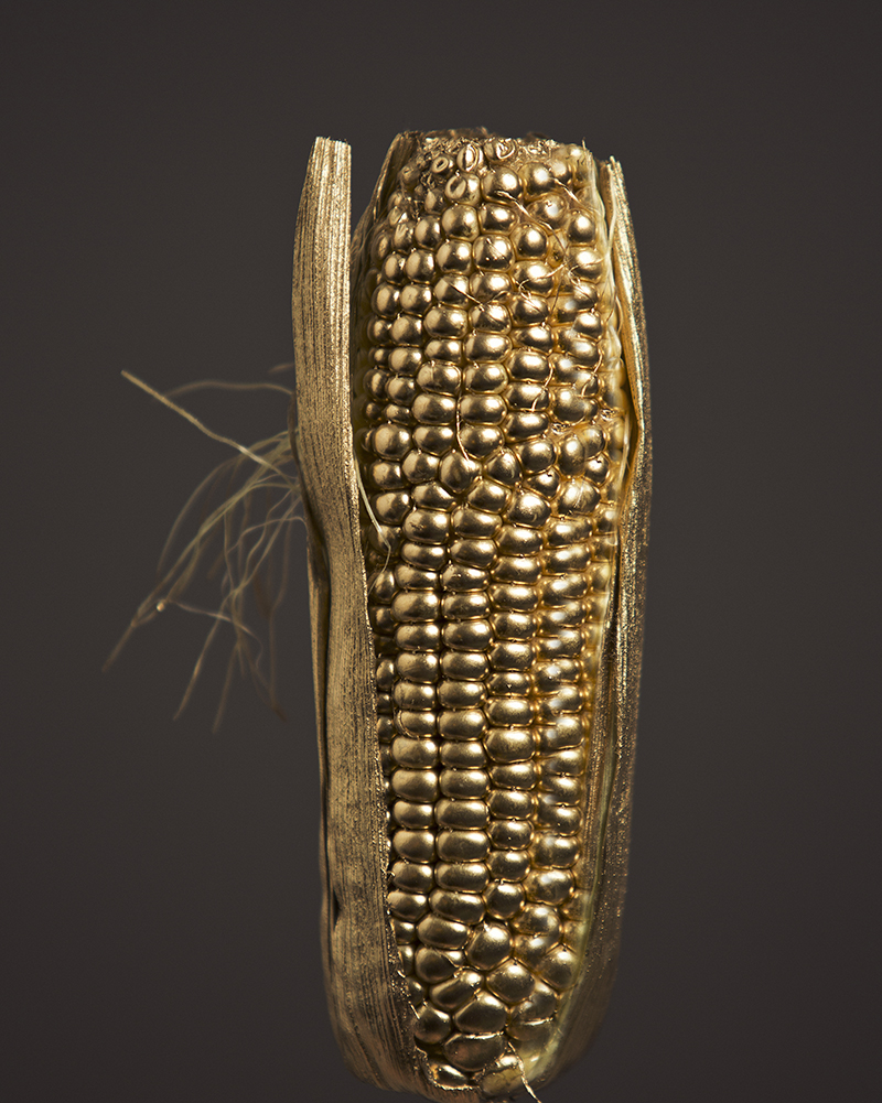 'Corn' by Tami Bar-lev